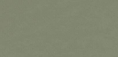 ファニチャーリノリウム 5